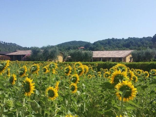 Agriturismo Bolsena - Arlena